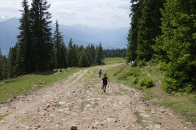 Orienteering gives hiking a point